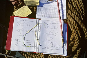 Research, tags and and tagging instruments with log book and diagrams of Great White Shark (Carcharodon carcharias) Dangerous Reef, Great Australian Bight, South Australia - Jeff Rotman