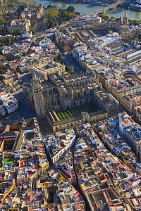 Aerial view of the historic centre of the city of Seville showing Cathedral and orange grove courtyard, Andalucia, Spain, March 2008 - Juan Carlos Munoz