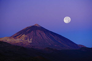 Full moon over Teide volcano (3,718m) at sunrise, Teide National Park, Tenerife, Canary Islands, Spain, December 2008  -  Wild Wonders of Europe / Relanzón