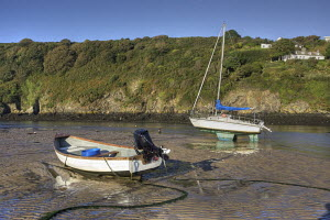 Boats at low tide in the early morning. Solva, Pembrokeshire, Wales, September 2009. - Graham Brazendale