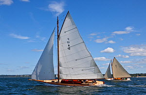 Yachts racing at Newport Classic Yacht Regatta, Rhode Island, USA. September 2009.  -  Onne van der Wal