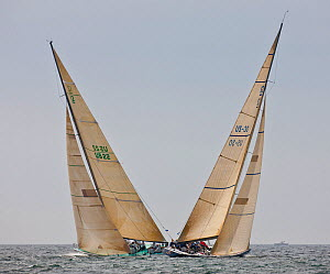 Two yachts crossing at the 12 Metre World Championships, Newport, Rhode Island, USA. September 2009.  -  Onne van der Wal