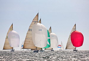 Yachts racing under spinnaker at the 12 Metre World Championships, Newport, Rhode Island, USA. September 2009. - Onne van der Wal