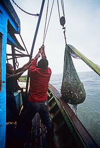 Fishermen pulling up a net full of shrimp and bycatch onboard semi-industrial shrimp dragger. Maputo, Mozambique, November 2008  -  Jeff Rotman