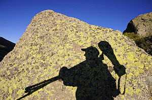 Shadow of photographer, Staffan Widstrand, carrying photography equipment, on rock, Sierra de Gredos, Spain, November 2008  -  Wild Wonders of Europe / Widstra