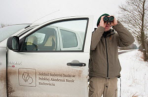 Researcher looking through binoculars, collecting data about bison, Bialowieza NP, Poland, February 2009  -  Wild Wonders of Europe / Unterthiner