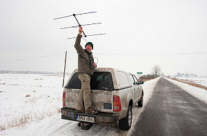 Researcher holding tracking antennae standing on the back of truck, collecting data on bison, Bialowieza NP, Poland, February 2009 - Wild Wonders of Europe / Unterthiner