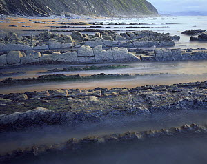 Rock formations, on coast at Barrika, Basque country, Bay of Biscay, Spain, October 2008  -  Wild Wonders of Europe / Popp-Ha