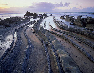 Rock formations on coast at Barrika, Basque country, Bay of Biscay, Spain, October 2008.  -  Wild Wonders of Europe / Popp-Ha
