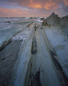 Rock formations, Atxabiribil beach, Basque country, Bay of Biscay, Spain, October 2008  -  Wild Wonders of Europe / Popp-Ha