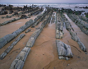Rock formations, Barrika beach, Basque country, Bay of Biscay, Spain, October 2008  -  Wild Wonders of Europe / Popp-Ha