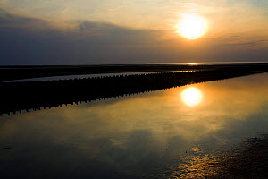 Sunset over the sea, Westerhever, Germany, April 2009  -  Wild Wonders of Europe / Novák