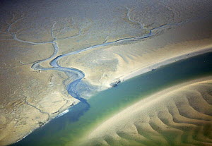 Aerial view of Hallig landscape, Germany, April 2009  -  Wild Wonders of Europe / Novák