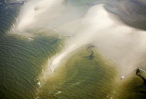 Aerial view of Hallig coastal landscape, Germany, April 2009  -  Wild Wonders of Europe / Novák
