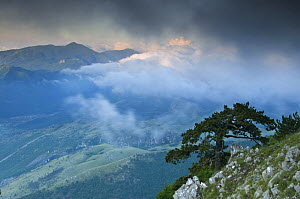 Low clouds over the Pollino National Park, Basilicata, Italy, June 2009  -  Wild Wonders of Europe / Müller
