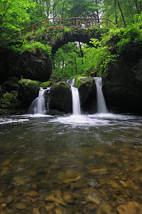 Schiessent�mpel waterfall, Consdorf, Mullerthal, Luxembourg, May 2009  -  Wild Wonders of Europe / T�nning