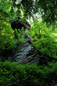 Rock formation 'Tour Malakoff' surrounded by Beech trees (Fagus sylvatica) Echternach, Mullerthal, Luxembourg, May 2009  -  Wild Wonders of Europe / T�nning