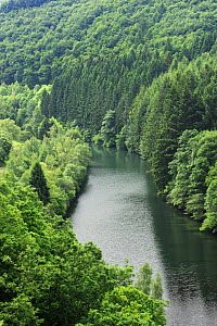 View from the Esch-Sur-S�re dam of the River Sauer flowing through a forest, Oesling, Ardennes, Luxembourg, May 2009  -  Wild Wonders of Europe / T�nning