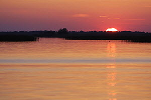 Danube Delta at sunset, Romania, May 2009  -  Wild Wonders of Europe / Presti