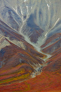 Aerial view of Polychrome Basin in Denali National Park, Alaska, USA, September 2008 - Jeff Vanuga