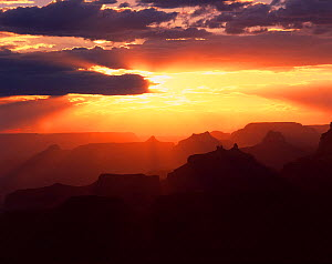 View from Navajo Point to the west with the sun's rays silhouetting Angels Gate, Isis, Shiva and Zoroaster Temples next to Wotons Throne at sunset, Grand Canyon National Park, Arizona, USA  -  Jack Dykinga