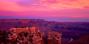 South rim of Moran Point at sunrise, with the Colorado River below, Grand Canyon National Park, Arizona, USA  -  Jack Dykinga
