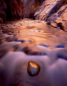 Virgin river flowing through Zion Canyon Narrows, with reflections of afternoon sun, Zion National Park, Utah, USA  -  Jack Dykinga