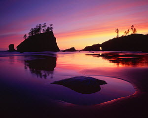 Silhouette of sea stacks at sunset with patterns in the sand left by the receding tide, Second Beach, Olympic Peninsula, Olympic National Park, Washington, USA  -  Jack Dykinga