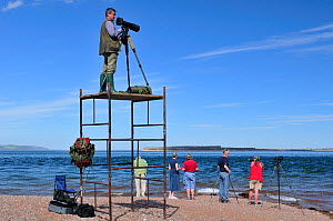 Laurie Campbell photographing Bottlenosed dolphins (Tursiops truncatus) from scaffold tower for Wild Wonders of Europe project, Moray Firth, Nr Inverness, Scotland, May 2009  -  Wild Wonders of Europe / Campbell