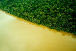 Aerial view of Yavari River and Amazon Rainforest, Peru  -  Mark  Bowler