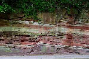 A normal fault in Triassic Sandstone, Wirral, UK, May 2009  -  Graham Eaton