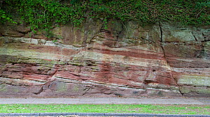 Normal faults in Triassic Sandstone, Wirral, UK, May 2009  -  Graham Eaton