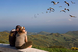 Birdwatchers observing White Storks (Ciconia ciconia) in flight over the Strait of Gibraltar. Mirador El Estrecho, Andalusia, Spain, 2007. - Angelo Gandolfi