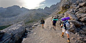 Hikers on footpath, Picos de Europa National Park, Cantabria, Spain. July 2008.  -  Angelo Gandolfi