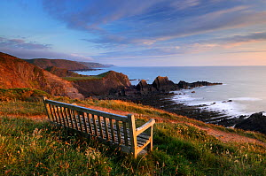 Hartland Quay, empty bench in evening light looking out to sea along coastline, North Devon, UK. June 2009. - Ross Hoddinott