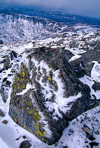 Snow on the summit of Cairnwell, Glen Shee, Cairngorms National Park, Scotland, UK, January  -  Laurie Campbell