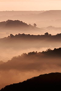 Hills surrounded by mist at dawn, Eype Down, near Bridport, Dorset, England, September 2006 - Guy Edwardes