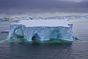 Huge tabular iceberg with ice arches and wave erosion, Antarctica (non-ex)  -  Andy Rouse