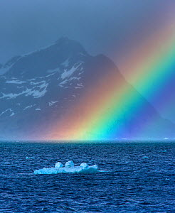 Rainbow over the sea with a small iceberg, South Georgia, December 2006 - Andy Rouse