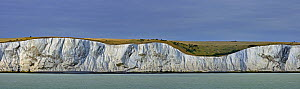 The white cliffs of Dover, Kent, UK, July 2009  -  Philippe Clement