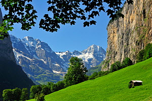 Alpine meadow with barn / raccard, Lauterbrunnen Valley, Bernese Oberland, Switzerland, July 2009 - Philippe Clement