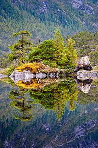 Lake surrounded by temperate rainforest, Campania Island, Great Bear Rainforest, British Columbia, Canada, September 2009  -  Nick Garbutt