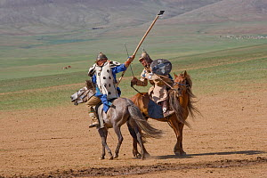 Re-enactement of a fight between an enemy and a soldier of the armies of Genghis Khan (emperor of the Mongol Empire) during the Genghis Khan Show, in Ulaanbaatar, Mongolia. The horses are Mongolian ho...  -  Kristel Richard