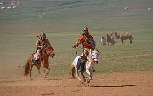 Two mounted soldiers from the armies of Genghis Khan (emperor of the Mongol Empire) during the Genghis Khan Show, in Ulaanbaatar, Mongolia. The horses are Mongolian horses. July 2007  -  Kristel Richard