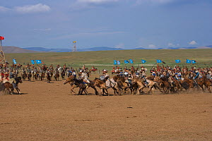 Re-enactement of an attack by the mounted armies of Genghis Khan (emperor of the Mongol Empire) during the Genghis Khan Show, in Ulaanbaatar, Mongolia. The horses are Mongolian horses. July 2007  -  Kristel Richard