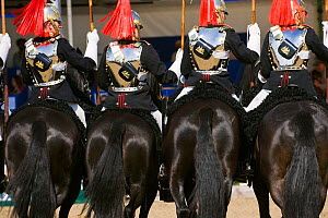 The Household Cavalry, dressed in official uniforms, parade in front of the Queen, during the Royal Windsor Horse Show, Windsor, Berkshire, England, UK. May 2008 - Kristel Richard