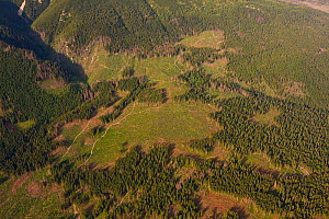 Aerial view of deforested area in spruce forest on the foothills of Mount Kriv�n, High Tatras, Carpathian Mountains, Slovakia, June 2009  -  Wild Wonders of Europe / D'Amicis