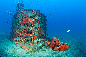 One of the deeper artificial reefs, Larvotto Marine Reserve, Monaco, Mediterranean Sea, July 2009 - Wild Wonders of Europe / Banfi