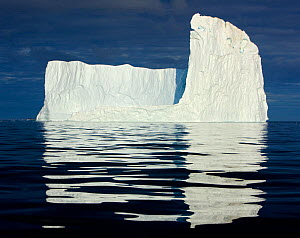 Icebergs, Disko Bay, Greenland, August 2009  -  Wild Wonders of Europe / Jensen