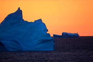 Icebergs at dusk, Greenland, August 2009  -  Wild Wonders of Europe / Jensen